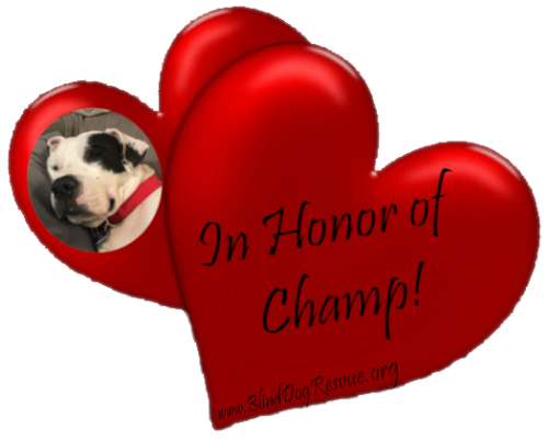 In Honor of Champ